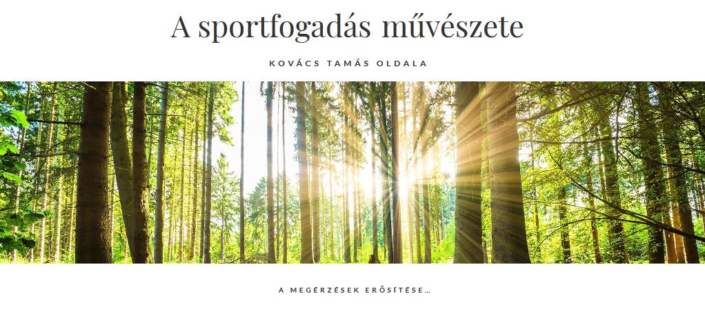 A sportfogadás művészete